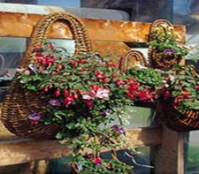 specialty-baskets