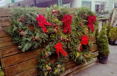 Wreaths red bow