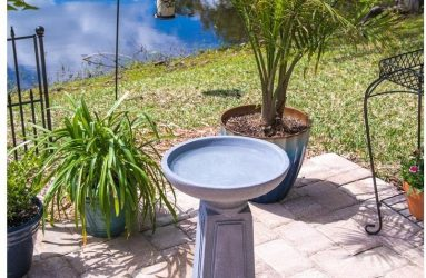 bird-bath-pedestal-concreate-finished-outdoor