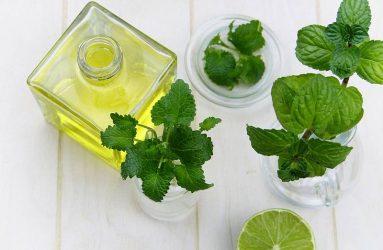 leaf-herbs