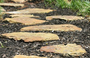 Garden path-of-stepping-stones
