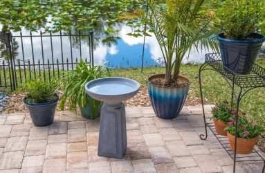 bird-bath-pedestal-concreate-finished-outdoor