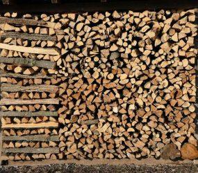 growing-stock-Firewood