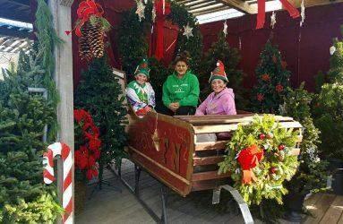 shop-Wreaths